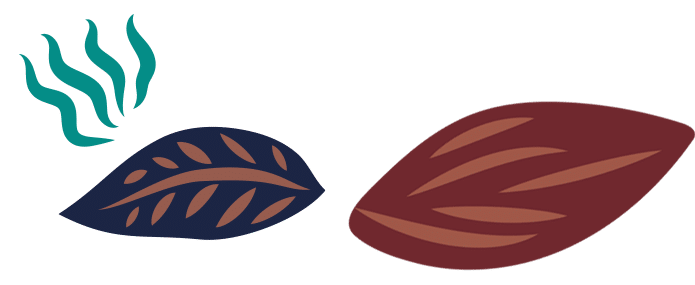 chocolats de saison